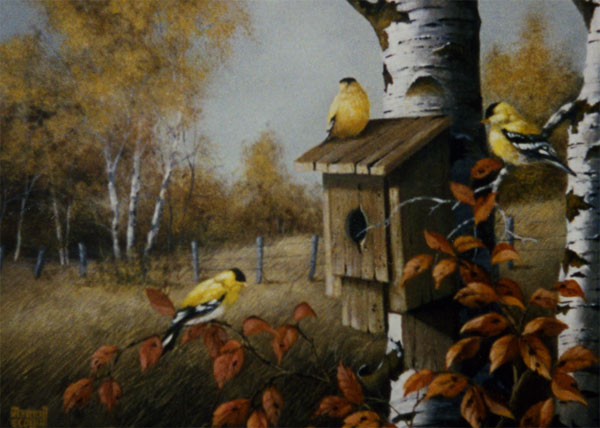 Merrill Coffin's Yellow Finch and Bluebird house