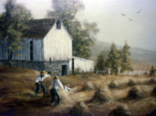 Haying a Field