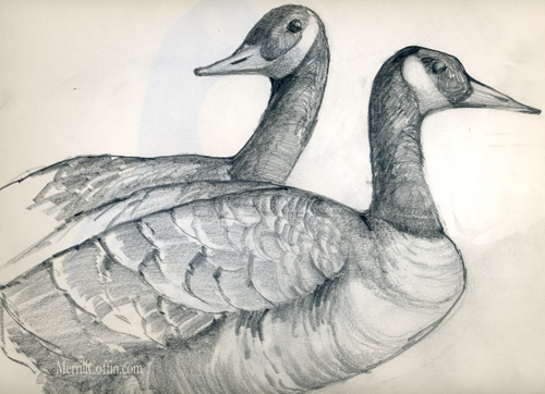 Merrill Coffin sketch of Geese
