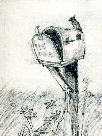 Merrill Coffin Cardinal Sketch