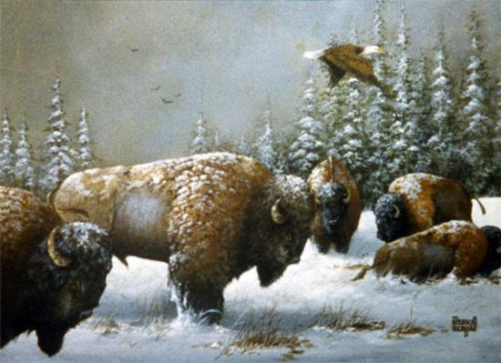 Buffalo and The Eagle