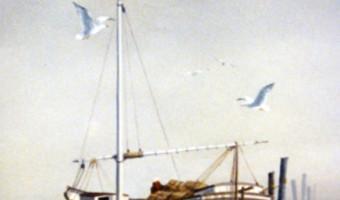 Docked White Boat