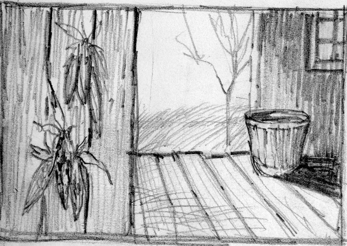 Corn Drying Sketch