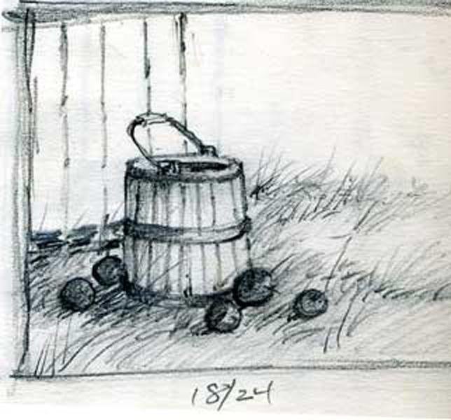 Apple Harvest Sketch